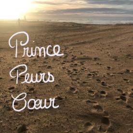 Petit_Prince texte